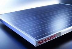Image result for Sharp Solar. Size: 235 x 160. Source: www.pv-magazine.com