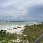 Image result for honeymoon island florida. Size: 149 x 149. Source: www.yelp.ca