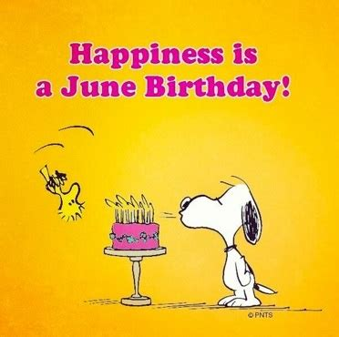 Image result for june pictures wisdom