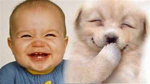 Images et smileys...en joutes - Page 21 Th?id=OIP.SJwdmC9jmhREDQNTM_sVMQHaEK&w=300&h=168&c=7&o=5&pid=1
