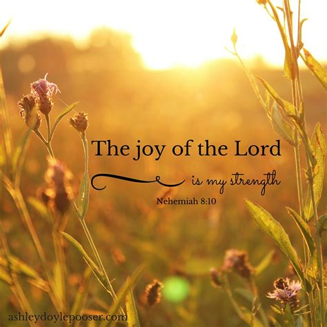 Image result for The Joy of the Lor