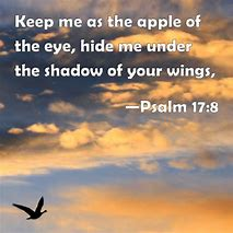 Image result for Psalm 17:8 ESV
