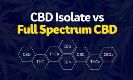 Image result for full spectrum vs isolate