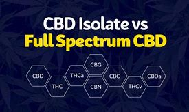 Image result for full spectrum vs isolate