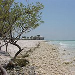 Image result for honeymoon island florida. Size: 149 x 149. Source: commons.wikimedia.org