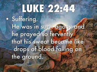 Image result for Jesus sweat blood