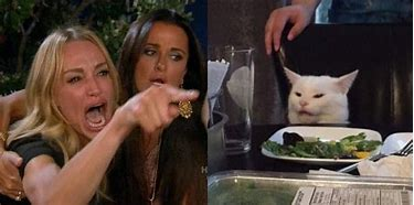 Image result for cat sitting at the dinner table meme