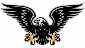 Image result for hawk mascot