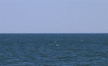 Image result for pictures of an empty ocean