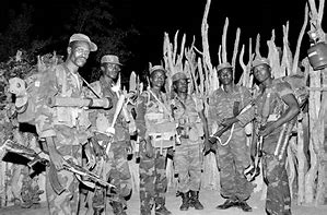 Image result for images angolan combatants