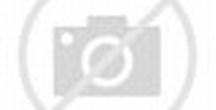 Image result for Oliver Bond                   Rats Infested Dublin
