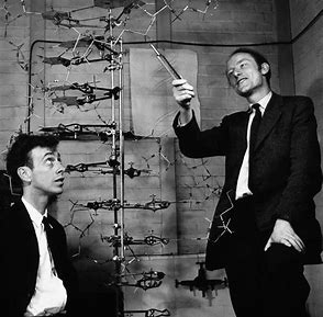 Image result for crick and watson images