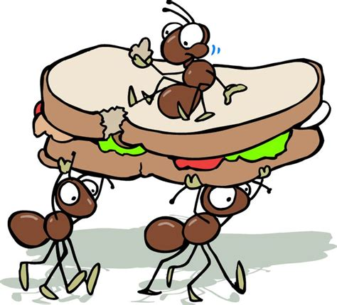 Image result for pictures of ants and a sandwich