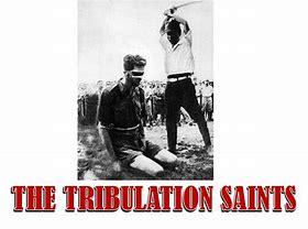 Image result for the tribulation saints