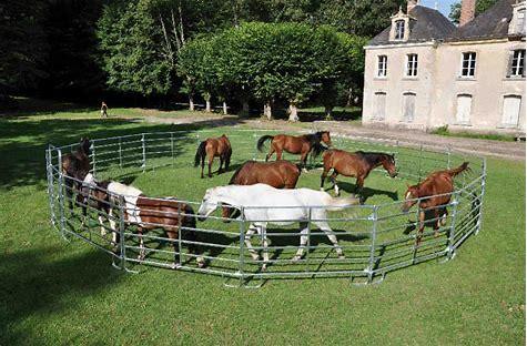 Resultado de imagen de imagenes de un caballo comiendo en un corral