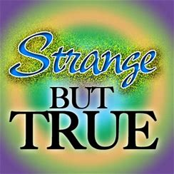 Image result for strange but true images