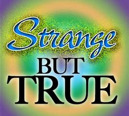 Image result for strange but true images