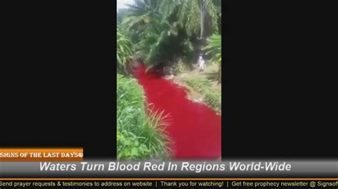 Image result for bloody red waters of the world
