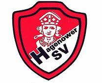 Bildergebnis für hagenower sv