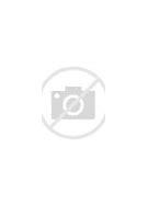 Resultado de imagen de escudo de la ciudad de nogales sonora