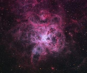 Tamaño de Resultado de imágenes de Nebulosa Tarántula.: 190 x 160. Fuente: observatorio.info