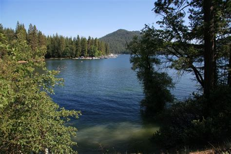 Image result for images bass lake, ca