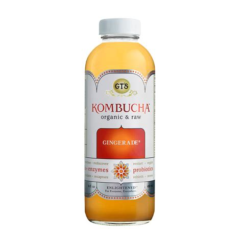 Image result for gt's kombucha