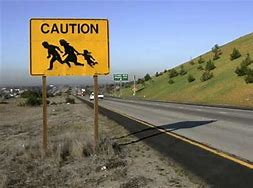 Image result for flickr commons images immigration crisis