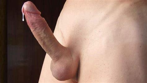 Large shaved penis-fudogira