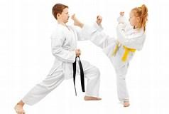 Image result for Kids Martial Arts
