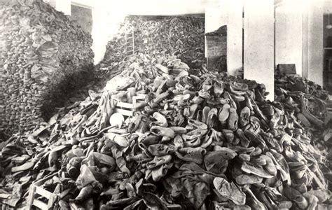 Image result for the holocaust