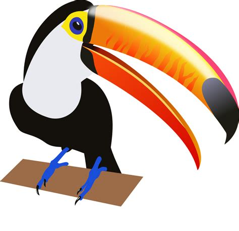 Image result for toucan clip art