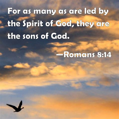 Image result for Romans 8:14