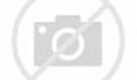 Image result for Beltway Sniper