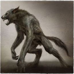 Image result for dogman