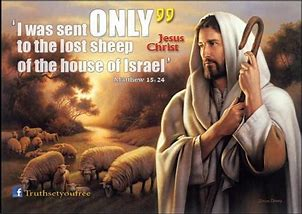 Image result for i was sent to the lost sheep of israel