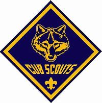 Image result for cub scout pictures