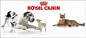Afbeeldingsresultaten voor royal canin