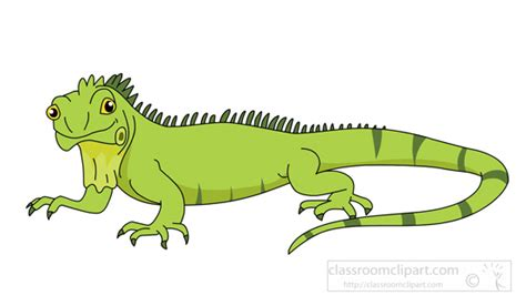Image result for iguana clipart free small size