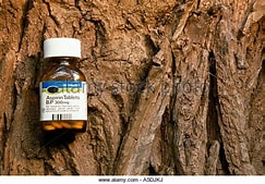 Image result for aspirin and willow bark. Size: 230 x 160. Source: www.alamy.com