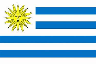 Bildergebnis für flagge uruguay