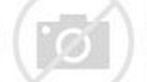 Sverre Aarseth