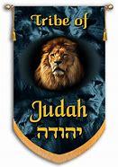 Image result for the tribal flag of judah