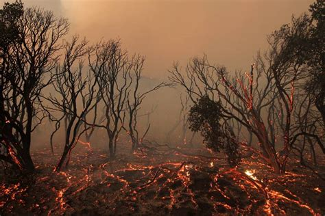 Image result for images fiery environmental devastation global warming