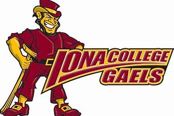 Image result for iona logo