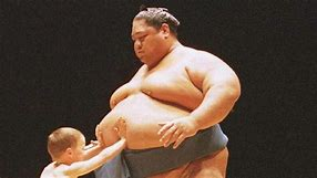 Image result for Free pictures of Sumo wrestlers