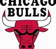 Image result for chicago bulls