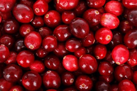 Image result for pixabay clip art for cranberries