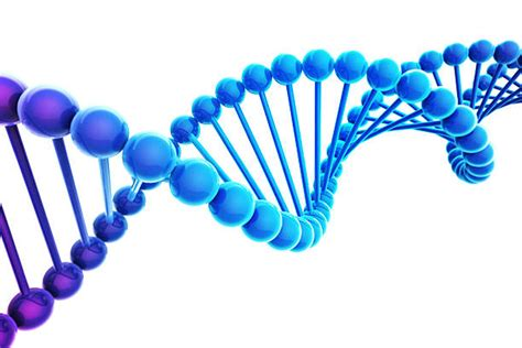 Image result for images dna