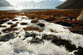 Image result for melting permafrost pictures